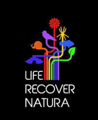 LIFERECOVER